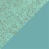 Sea Green Vadal Uni