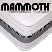 Mammoth Rise