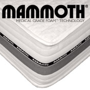 Mammoth Move