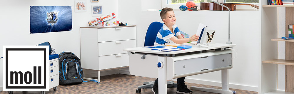 Moll Desks and Chairs
