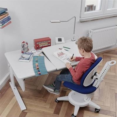 Moll Ergonomic Children's Furniture