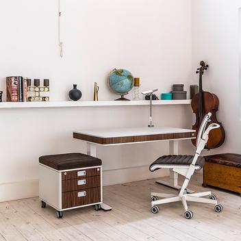 Moll T7 Standing Desk