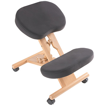 which is the best office chair for my back pain back in action