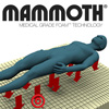 Mammoth Performace Mattress