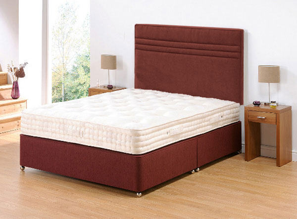 Backinaction Divan - No Drawers