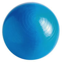 Gymnic Gym Ball